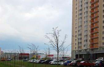 Продам комнату 20 кв.м в малонаселенной 3 к.кв в Приморском районе