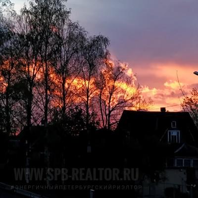 Утренний пожар зари