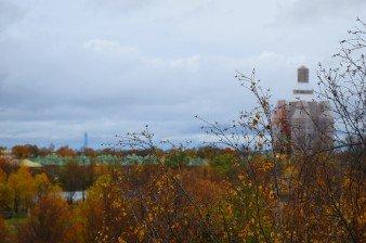 Продаётся двухкомнатная квартира в Петергофе с видом на парк и собор
